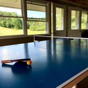Ping pong at the 1824 House Barn Door Club