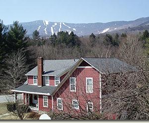 mountain view 7
