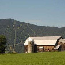 summerfarm.jpg